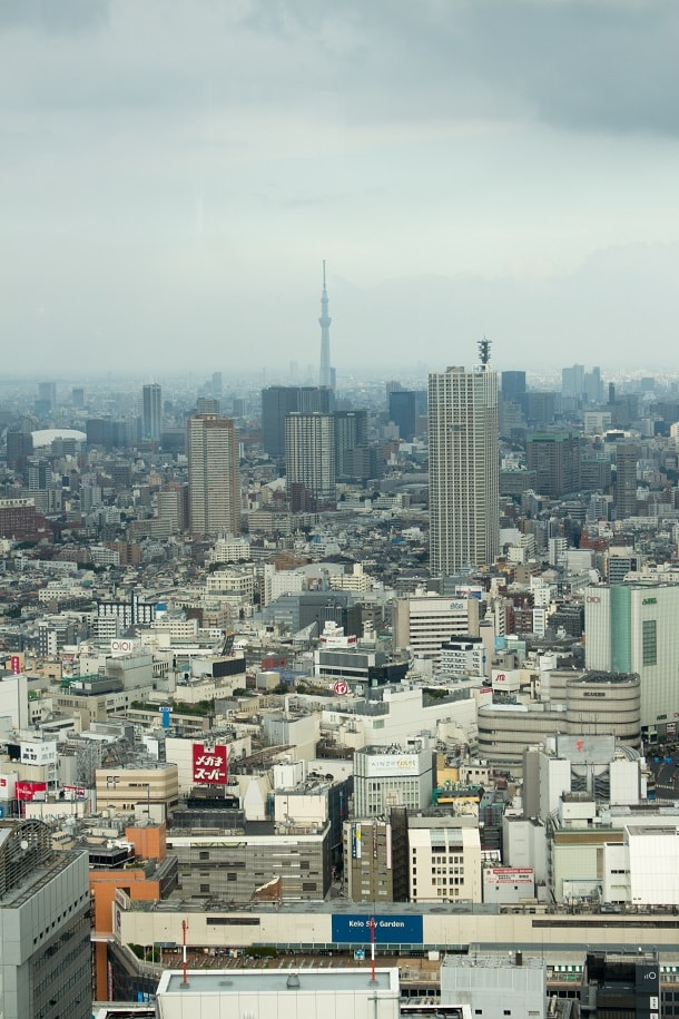 View of Tokyo Tower from Tokyo Metropolitan Government Building