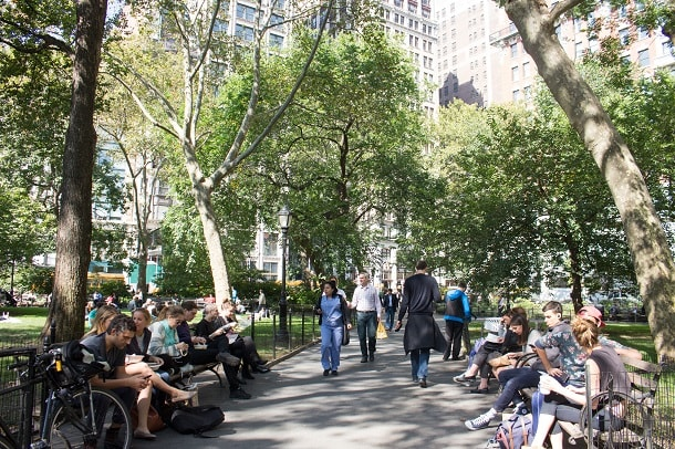 Lunchtime in Madison Square Park