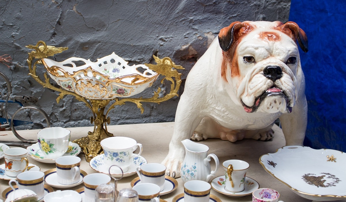 A dog in a china shop